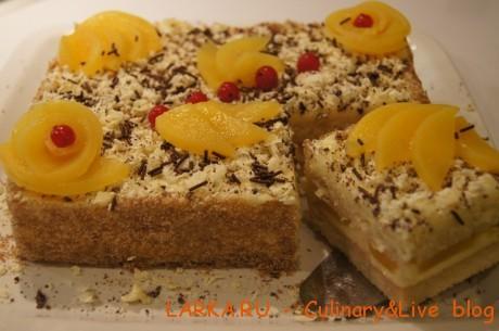 DSC06122 460x305 Бисквитный домашний торт /быстро и вкусно/