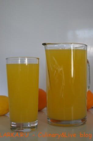 DSC07000 305x460 Очень вкусный и полезный цитрусовый напиток